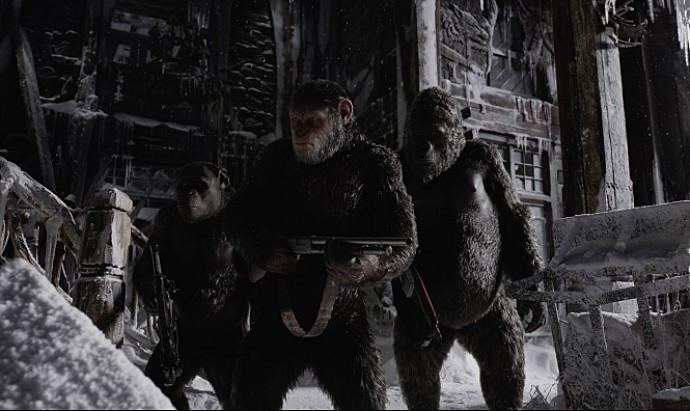 15일 개봉하는 영화 '혹성탈출: 종의전쟁'에 등장하는 주인인 침팬지 '시저(가운데)'는 유인원 집단을 이끄는 대장이다. 비슷한 체구일 때 침팬지는 인간보다 2배 가량 힘이 세고, 유전공학의 힘을 빌리면 영화 속 침팬지처럼 지능이 뛰어난 개체가 나올 수 있다. - 20세기폭스코리아 제공