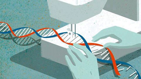 """""""유전자 편집기술 잘 알수록 유전자 치료 지지"""""""