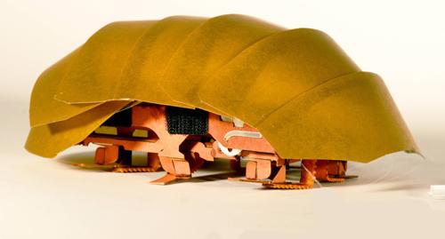 미국 UC버클리대 폴리페달 생체역학연구실 로버트 풀 교수팀이 하버드대와 공동으로 개발한 바퀴벌레 로봇. 겉모습은 물론 구조까지 살아있는 바퀴벌레를 흉내내 만들었다. 등껍질은 탄성이 있고 충격을 흡수하는데다 여러장으로 나뉘어 접어진다. 강한 충격을 받아도 문제없고 몸 높이를 절반까지 낮출 수도 있다. 6개의 다리를 교차로 움직이며 좁은 공간 밑에서도 재빠르게 이동할 수 있어 지진 등 재난현장에서 생존자 파악에 쓸 수 있을 것으로 보인다. - 미국 UC버클리대 제공
