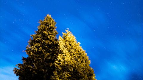평화와 사색, 영국의 밤하늘