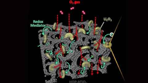탄소 대신 티타늄...리튬 공기 전지 수명 확 늘렸다