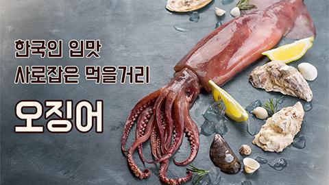 [카드뉴스] 한국인 입맛 사로잡은 먹을거리 오징어