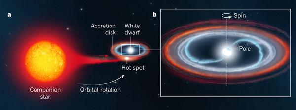 격변변광성이 신성 폭발을 일으키는 메커니즘을 도식화한 그림이다. 근접쌍성계에서 적색거성 같은 동반성(왼쪽)에서 백색왜성(가운데 네모 안)으로 물질이 유입될 경우 별 표면 온도가 올라가 수소융합반응이 일어나면서 껍질이 폭발한다. 오른쪽은 백색왜성 부분을 확대한 이미지다. - 네이처 제공