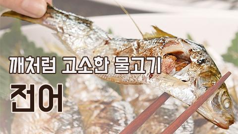 [카드뉴스] 깨처럼 고소한 물고기 전어