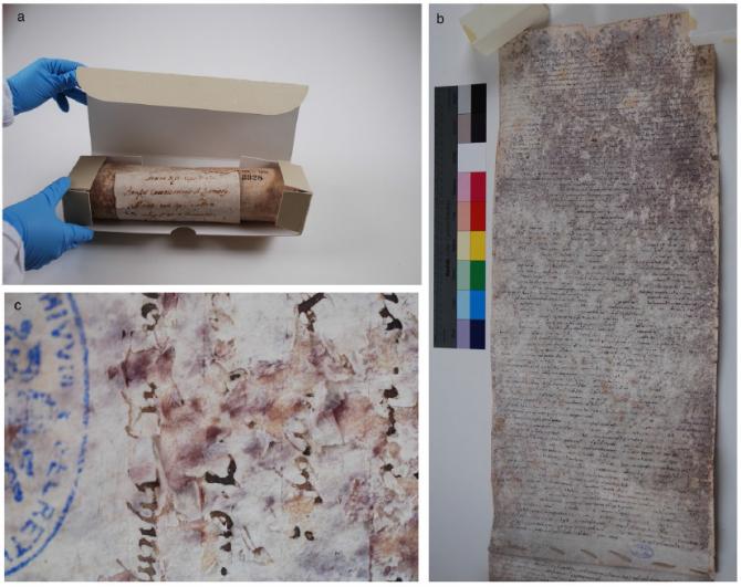 연구팀이 분석에 사용한 13세기 양피지 문서 - Tor Vergata University 제공