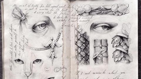 슬픈 고양이와 사람의 눈, 예술가의 스케치북