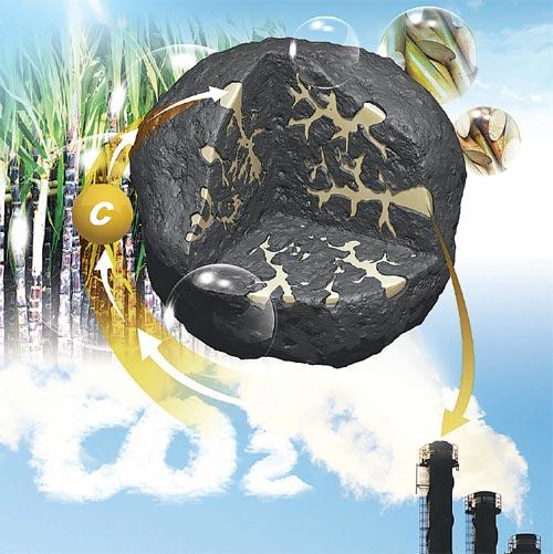 한국에너지기술연구원이 개발한 하이브리드 석탄. 사탕수수, 당밀 등 식물 성분에서 뽑아낸 탄소(C)를 석탄의 공극에 넣어 효율을 높인다. 탄소가 첨가된 석탄이 발전소에 투입되면 높은 열량을 낸다. - 한국에너지기술연구원 제공