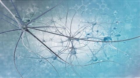 파킨슨병 일으키는 유전자 부위 대거 발견