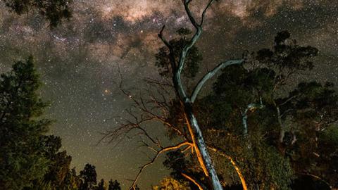 호주의 밤하늘 '최고의 야경'