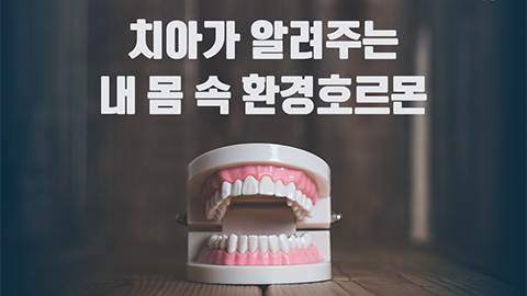 [카드뉴스] 치아가 알려주는 내 몸 속 환경호르몬