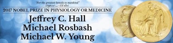 시차가 유전자 때문이었다니! 노벨 생리의학상, 생체시계 비밀 밝힌 美 과학자들에 (종합)