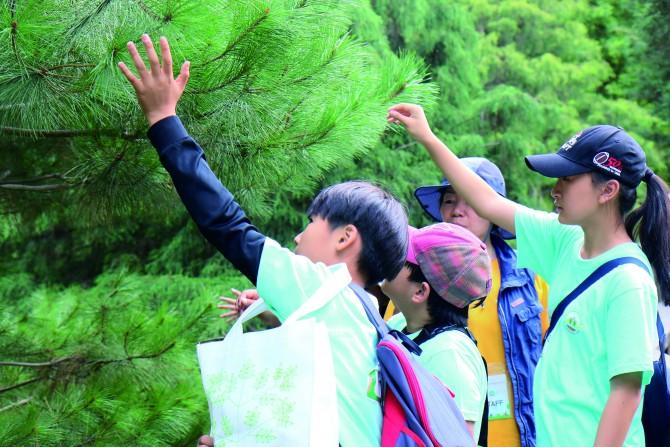 침엽수의 잎을 직접 만져 보는 탐험 대원들. - 정한길 기자 제공