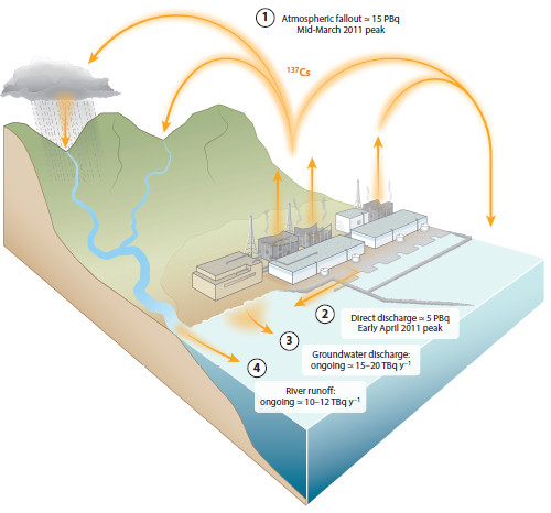 2011년 후쿠시마 원전 사고로 세슘137이 바다로 유출된 경로와 추정량을 도식화한 그림이다. 이에 따르면 사고 초기 낙진으로 떨어진 게 15PBq(페타베크렐), 직접 유출이 5PBq에 이르렀다. 반면 지하수나 강을 통한 유출은 각각 연간 15~20TBq(테라베크렐), 10~12TBq로 양이 훨씬 적지만 대신 지금도 여전히 일어나고 있다. - 해양과학연간리뷰 제공