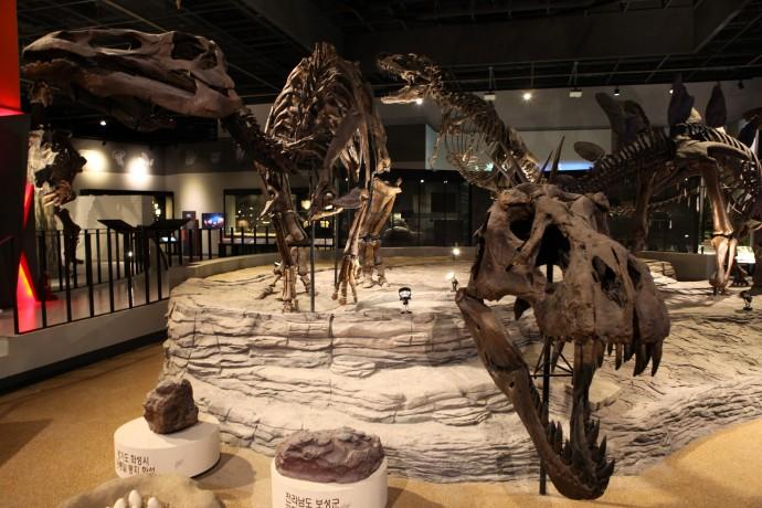 자연사관에서 눈길을 가장 끄는 것은 누가 뭐래도 공룡 뼈 화석이다. - 국립과천과학관 제공
