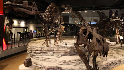 박물관이 살아있다! 첨단 기술 만난 국립과천과학관 자연사관 재개관