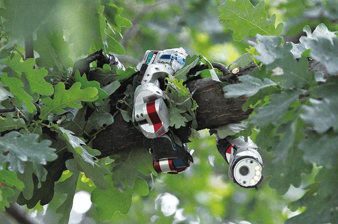 미국 카네기멜론대학교 바이오로보틱스 연구실에서 개발한 뱀로봇. - Carnegie Mellon's Biorobotics Laboratory 제공