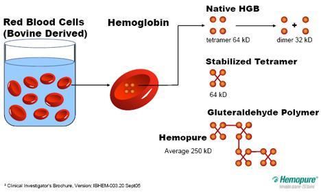 적혈구가 없는 대신 헤모글로빈을 산소운반체로 쓰는 혈액대체제가 여럿 개발됐다. 2001년부터 남아공에서 상용화돼 쓰이고 있는 헤모퓨어의 경우 소의 적혈구에서 추출한 헤모글로빈 단백질을 서로 화학결합으로 연결해 안정화시킨 입자(헤모글로빈 15~16개)를 이온 용액에 분산한 상태다. - HbO2세라퓨틱스 제공