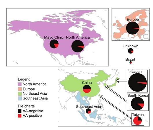동아시아의 전통처방에 약재로 쓰이는 쥐방울덩굴과 식물에 들어있는 아리스톨로크산(AA)은 DNA를 공격해 변이를 일으킨다. 전체 간암에서 AA 관련 간암(빨간색)의 비율을 나타낸 도표로 대만은 78%, 중국은 47%에 이르고 우리나라도 13%를 차지한다. 원의 크기는 조사한 간암 건수에 비례한다. - 사이언스 중개의학 제공