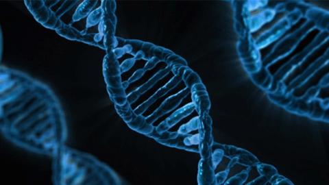 """[과학&기술의 최전선]""""3,4년 뒤 100달러로 내 모든 DNA 한눈에 본다"""""""