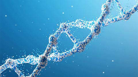 [과학&기술의 최전선] 마흔살 게놈 해독 기술의 숨가쁜 진화