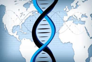 비만 관련 유전자 ADRB3, 미리 알았다면 날씬했을까?