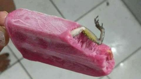 개구리가 든 아이스크림 '진위논란'