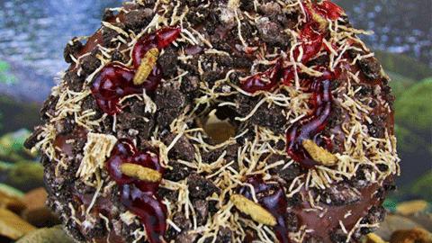 귀뚜라미로 만든 도넛