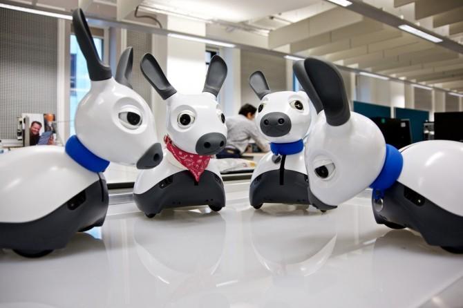 지난 10월, 콘시퀀셜 로보틱스 스튜디오에서 만난 네 마리의 미로(MiRo). - Consequential Robotics 제공