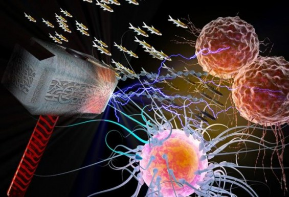 북유럽신 토르를 막으면 암도 고칠 수 있다?