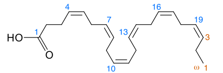 대표적인 오메가3 지방산인 DHA의 분자구조다. DHA는 탄소 22개로 이루어진 선형분자로 이중결합이 여섯 개 있어 구조가 유연하다. - 위키피디아 제공