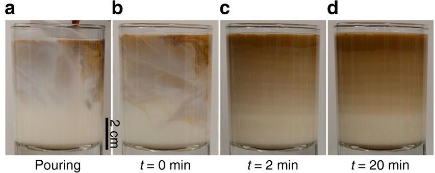 레이어드라떼가 만들어지는 과정이다. 유리잔에 50도로 데운 우유 150ml가 담긴 유리잔에 에스프레소 원샷(30ml)을 부으면(a) 위쪽에 에스프레소 마키아또가 형성된 뒤(b) 아래로 갈수록 에스프레소 비율이 연속적으로 줄어드는 층이 생긴다. 그런데 약 2분쯤 지나면 경계 부분이 여러 층으로 나뉘고(c) 이 상태가 20분이 지난 뒤에도 유지된다(d). - 네이처 커뮤니케이션즈 제공