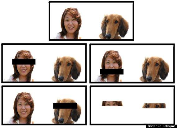 실험에 사용된 5가지 사진. - 사다히코 나카지마 제공