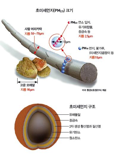 초미세먼지 크기와 구조. - 과학동아 2013년 5월호 제공