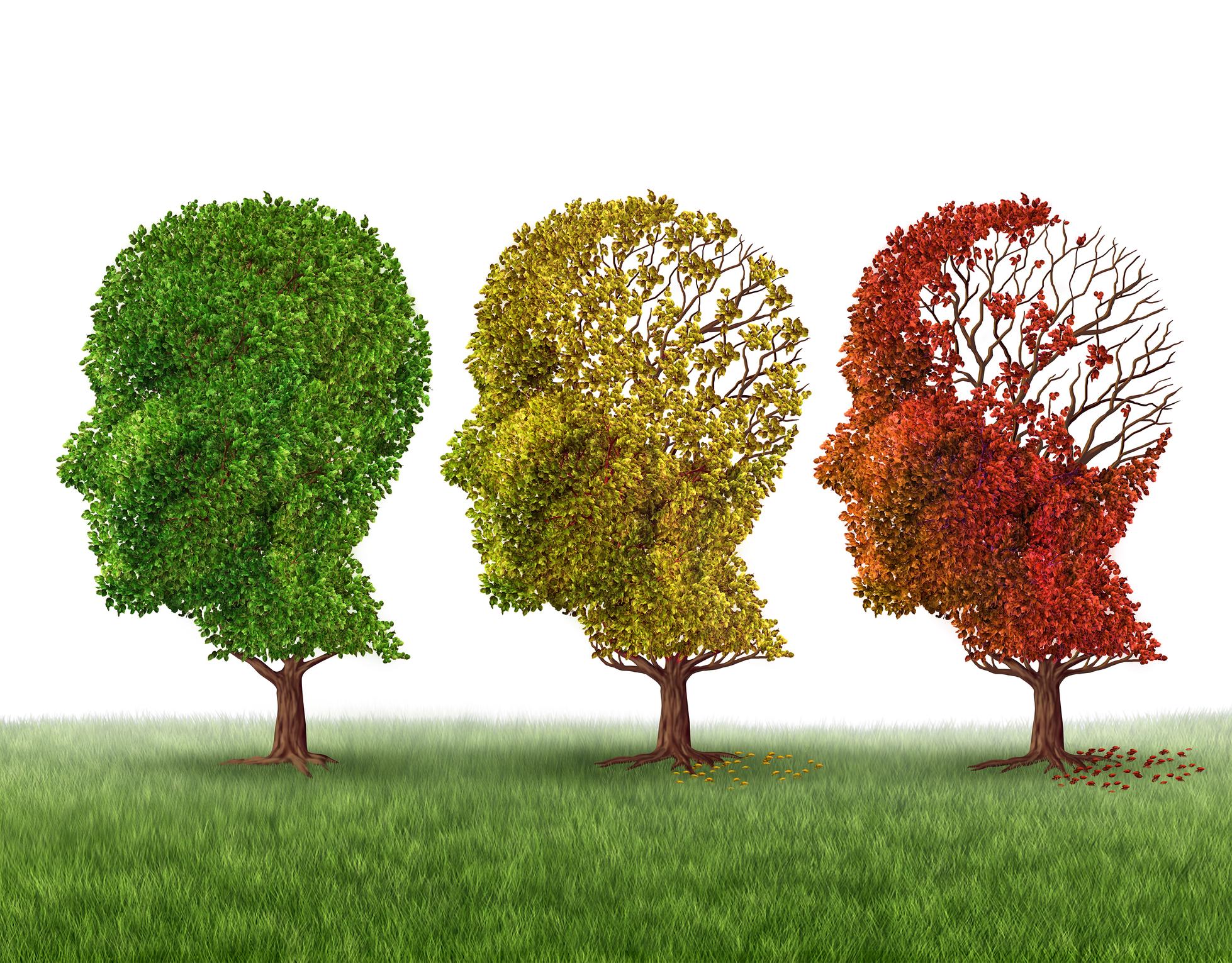 한국한의학연구원은 김재욱 미래의학부 책임연구원 연구팀이 이마 앞쪽에 위치한 전전두엽 뇌파 측정만으로 치매 위험군을 선별할 수 있는 기술을 개발했다. 게티이미지뱅크