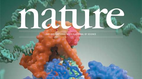 [표지로 읽는 과학] 극저온전자현미경으로 관찰한 RNA 중합 효소의 모습