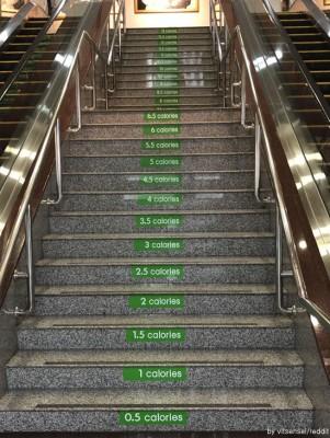 운동 욕구를 자극하는 계단