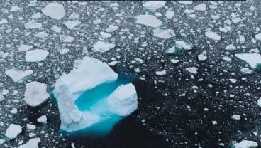 [표지로 읽는 과학] 남극의 기후변화 폭, 해마다 커진다