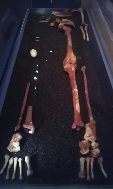 파빌랜드의 붉은 숙녀. 그러나 사실 이 화석은 3만년 전 20대 남성의 화석이었다. 붉은 색이 주는 선입관이 만든 상상이, 눈에 보이는 진실을 보지 못하게 한 것인지도 모른다 - wikimedia(cc)