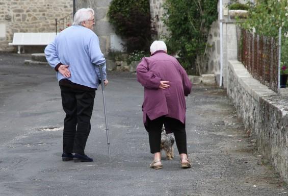 국내 연구진, 노인 근육감소증 치료제 실마리 찾았다