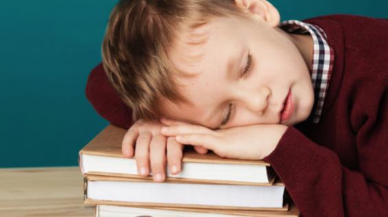 꿀잠이 우리 아이 어휘력 향상에 끼치는 영향
