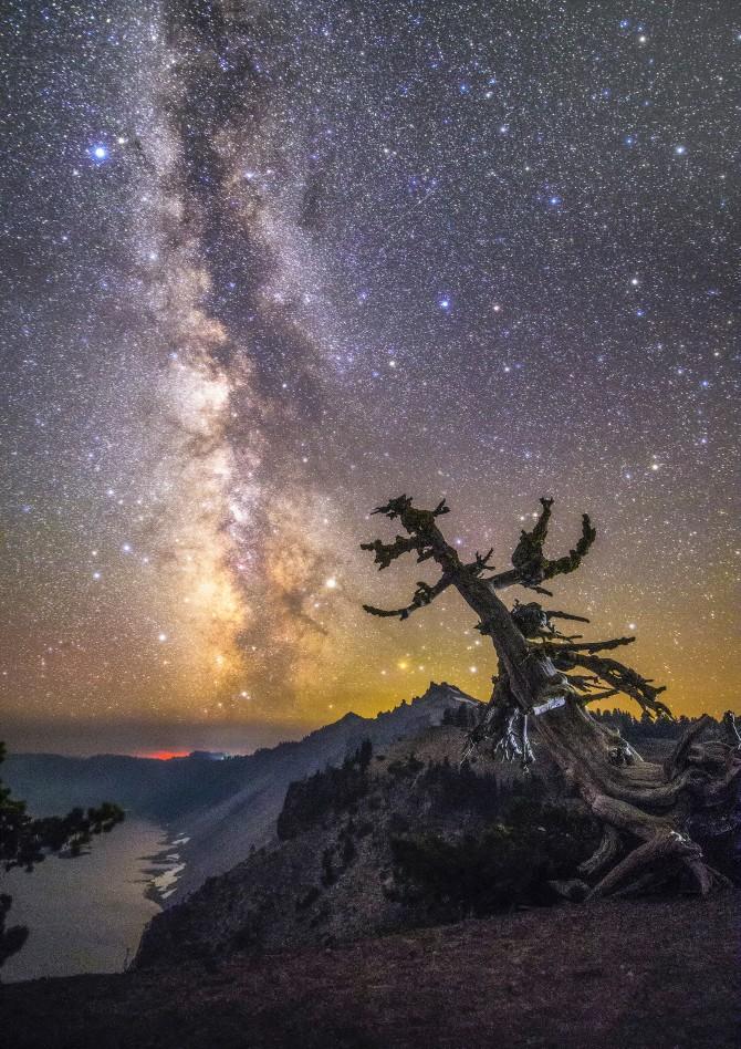 지구와 우주 분야 금상 '크레이터호수의 은하수' 김석희作 - 미국 오리건주 화산 지형인 크레이터 호수 국립공원에서 촬영한 은하수다. 칼데라 호수 위로 마치 연기처럼 보이는 은하수와 그 아래 고사목 한 그루가 담겨 있다.