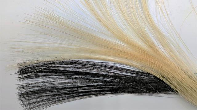 그래핀으로 만든 염색 코팅제로 금발을 검게 염색했다. 황 교수팀은 머리카락이 상하지 않을 뿐만 아니라 그래핀 때문에 정전기도 잘 안 생긴다고 설명했다.