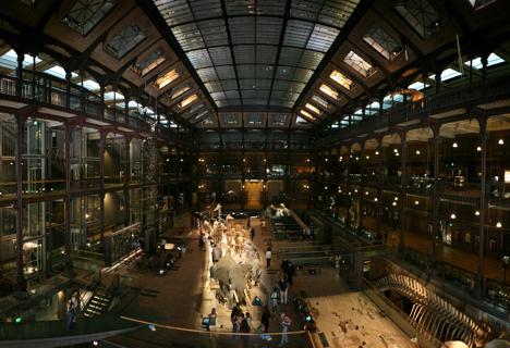 프랑스 파리의 국립 자연사 박물관. 프랑스 대혁명의 와중에 설립된 국립 자연사 박물관은, 유럽 박물학의 중추 기관으로 기능했다. 급진적 격변설을 주장하던 퀴비에와 점진적 생물변이설을 주장하던 라마르크는 죽는 날까지 학문적 싸움을 벌였다. 과연 누가 승리했을까? - wikimedia(cc)