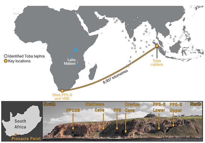 토바화산의 분출물로 기존의 확인된 것(하얀원)과 새로 확인된 지역(노란원)이다. 특히 새로 확인된 지역이 토바화산에서 약9000km 떨어진 것이 확인돼 강력한 폭발을 입증한다고 설명하고 있다.-University of Nevada