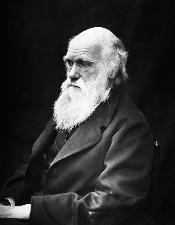 만년의 찰스 다윈. 다윈은 비글호 항해를 다녀온 후 무려 18년 이상 은둔하다시피 하며, 진화론의 여러 이론을 다듬어갔다. - pixabay 제공