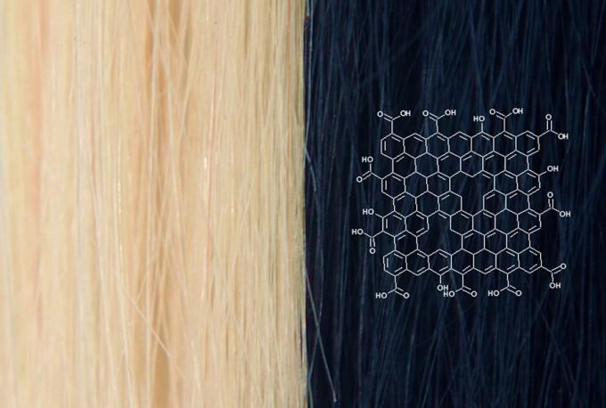 원래 금색이었던 머리카락을 미국 노스웨스턴대 연구팀이 개발한 그래핀 염색약으로 검게 염색했다. - Chem 제공