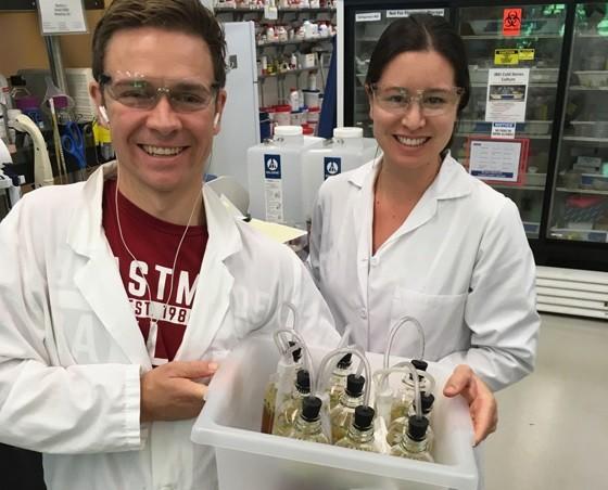 UC버클리대의 찰스 덴비 연구원과 라이첼 리 연구원이 실험실에서 만든 맥주를 들고 있다. 이들은 값비싼 홉을 넣는 대신 맥주 효모가 스스로 방향 물질을 생성하도록 DNA(유전자)를 재조합해 향긋한 맛과 향을 가진 맥주를 만들었다. - UC버클리 제공