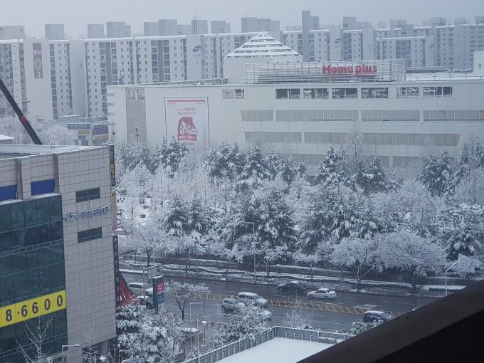 3월 21일 대전의 상황. 추위와 함께 내륙 곳곳에 눈이 내렸다 - 전승민 기자 제공