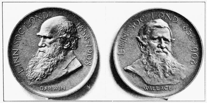 1908년 7월 1일 린네 학회는 알프레드 월리스에게 이른바 다윈-월리스 메달을 수여했다. 다윈과 월리스의 린네 학회 공동 발표를 기리는 기념 메달의 한 면에는 다윈, 다른 면에는 월리스의 얼굴이 양각되어 있다.-wikiemedia(cc)