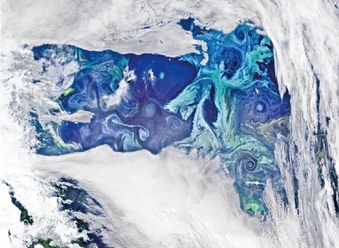 식물성 플랑크톤(청록색)이 남극해에 분포한 모습을 인공위성으로 촬영했다. 고르게 퍼지지 못하고 오른쪽 아래에 몰려 있는 모습을 확인할 수 있다. 2011년 발사된 미국의 극지관측위성인 '수오미(Suomi NPP)'가 2016년 2월 촬영했다. - NASA'S OCEAN COLOR WEB (NORMAN KURING) 제공